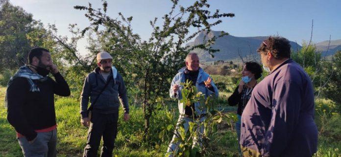 Nasce una Food forest nel bene confiscato a Partinico